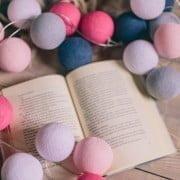 Rožinis flamingas_ berrylights 3dalis (77)-min