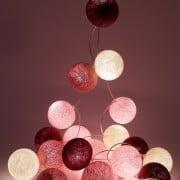 rožių žiedapiai_berrylights-min