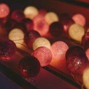 rožių žiedapiai_berrylights tamsoelemputes4 (1)-min