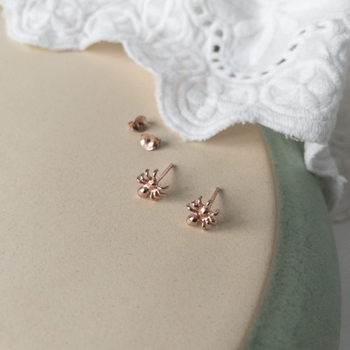 rozinio aukso auskarai – voras